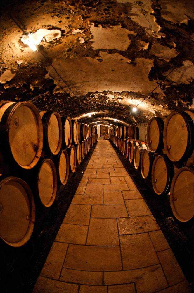 Illustration de Comment choisir une cave à vin ?